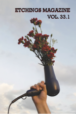 Issue 33.1 cover-hand holding a hairdryer into a cloudy sky with red carnations blowing out